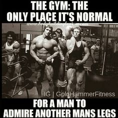 Funny fitness gym humour gym memes lol fitness motivation in Fitness Studio Motivation, Fitness Studio Training, Gym Motivation, Arnold Motivation, Bodybuilding Motivation, Bodybuilding Memes, Arnold Bodybuilding, Best Gym Quotes, Fitness Quotes
