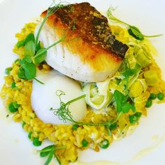 """Meals by @jimmer_mcmahon looking amazing as always 🎣 """"Seared cod fillet, smoked haddock kedgeree risotto, creamed leeks, & SousVide hens egg"""" Sous Vide Cooking, Cooking Appliances, Hens, Salmon Burgers, Cod, Risotto, Supreme, Amazing"""