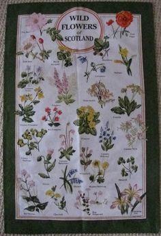 Vintage Tea Towel Dish Towel * Wild Flowers of Scotland * Cotton * Unused * by ArohanuiVintage on Etsy