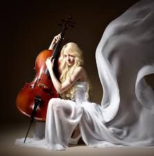 Image result for cello wings