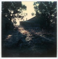 Polaroid by Andrei Tarkovsky Lot 19 - Polaroid 4