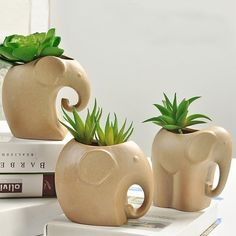 Creative Small Flower Pots Coarse Pottery Flower Pot Elephant Succulents Planter Kawaii Little Animals Ceramic Flowerpot Pig Elephant Hedgehog Planter On Sale Cute Succulent Plants Small Flower Pots, Ceramic Flower Pots, Ceramic Planters, Clay Flower Pots, Succulent Pots, Planting Succulents, Planting Flowers, Small Succulents, Planter Accessories