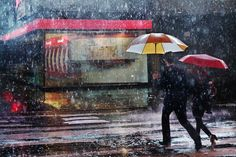 everyday_i_show: photos by Christophe Jacrot