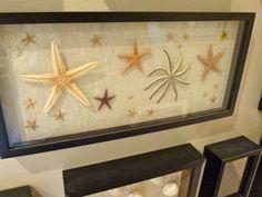 framed-starfish-dmm.jpg 640×480 pixels