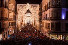 Malaga Christmas Lights 2014, simply stunning!  #malaga #christmas #lights