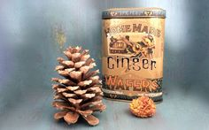 Love this vignette featuring this vintage ginger tin! Vintage Tins, Vintage Table, Vintage Metal, Vintage Decor, Metal Tins, Vignettes, Trays, Tabletop, Dog Food Recipes