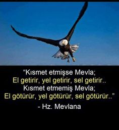 Zitate von Mevlana – Sevgi Yalgın – Join the world of pin Reminder Quotes, Words Quotes, Me Quotes, Famous Words, Words Worth, Stephen Hawking, Sufi, Quotes About God, Meaningful Words