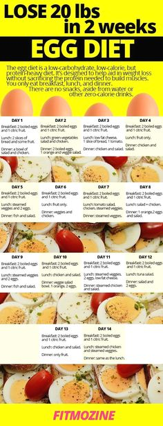 Lose up to 20 pounds with easy to follow egg #diet. #fitmozine #eggs #diet #weightloss Diet And Nutrition, Nutrition Guide, Nutrition Drinks, Nutrition Store, Holistic Nutrition, Proper Nutrition, Egg And Grapefruit Diet, Ketogenic Diet Plan, Detox Diets