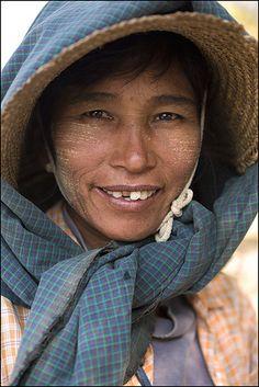 S H E P E R D E S S. Bagan