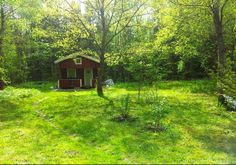 Spring green. Tiny Swedish cottage.