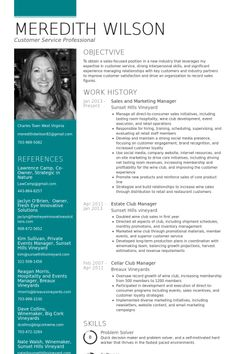 Marketing Manager Resume Example  Night Hawk Security