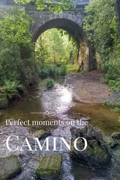 The journey of a lifetime... walking the Camino de Santiago.