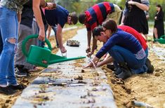 Students plant hundreds of red Russian kale seedlings to be harvested for their summer CSA program