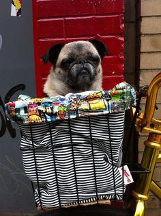 Bike Basket Liner Tote Bag by Brookidlyn on Etsy, $45.00
