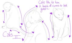 How-To: Cats II