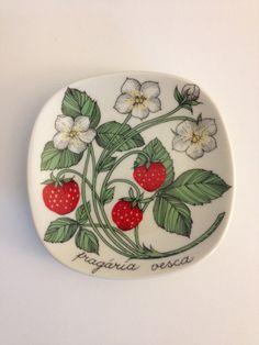 Arabia Finland Botanica Plate Esteri Tomula Art by VintageByBeth Ceramic Painting, Ceramic Art, Strawberry Kitchen, Scandinavian Art, Plate Design, Fruit Art, Hand Painted Ceramics, Ceramic Plates, Pottery Art