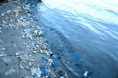 Imagen insertada6 paises cubiertos de plástico