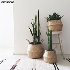 Nordic plant Weave Storage basket Simple Rattan Hanging Baskets Hand decoration Bubble Potted plant folding basket free shipping