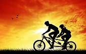 Tandem bike Images and Stock Photos. 460 tandem bike photography and royalty free pictures available to download from over 100 stock photo companies.