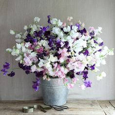 The Real Flower Company scented roses & sweet peas - From Britain with Love Sweet Pea Wedding Flowers, Sweet Pea Flowers, All Flowers, Growing Flowers, Beautiful Flowers, Sweet Pea Bouquet, April Birth Flower, Growing Sweet Peas, Virtual Flowers
