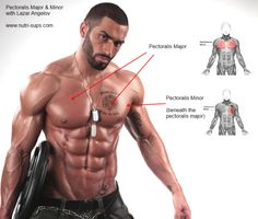 Exercises To Sculpt the Chest