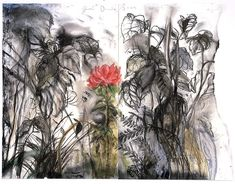 Jim Dine - A Peony from Auckland 2003 Jim Dine, Gcse Art Sketchbook, Pop Art Movement, Woodland Art, Plant Drawing, A Level Art, Garden Painting, Famous Art, Black And White Drawing