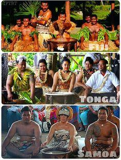 Ceremonial Kava Fiji Tonga Samoa