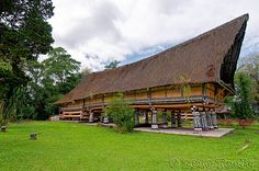Rumah Bolon or long house of the Batak chief.Among the tribal houses is the Rumah Bolon, or long house of the Batak chief. It was built by the XII Chief of the Bataks, Tuan Rahalim. The long house was built of solid teak and stand on twenty poles. The roof gables are ornately decorated with designs in red, black and white, the traditional Batak colours. These colours carry special significance, white denotes the holy spirit, red denotes the way of life, and black denotes black…