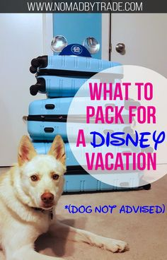 Planning a trip to one of the Disney parks? Don't forget the items on this packing list recommended by a former cast member.