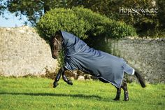 Horseware Collection S/S16: Bravo 12 Plus. Visit www.horseware.com to find your nearest stockist.