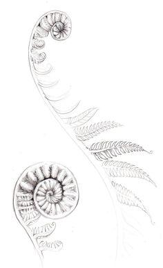 maori tattoos meaning Geometric Tattoo Pattern, Tattoos Geometric, Geometric Sleeve, New Tattoos, Body Art Tattoos, Sleeve Tattoos, Maori Tattoos, Group Tattoos, Tatoos