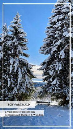 Schwarzwald: er ist ein beliebtes Ausflugziel im Süden Deutschlands! Ich zeige euch heute 7 tolle Ausflugziele zum wandern und autark campen. #wandern #schwarzwald #deutschland