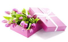 Birthday flowers and gifts delivery are closely related to each other. Visit Buds N Roses, make your choice and send birthday flowers and gifts to your loved ones. You can find excellent online birthday gift ideas for people of all the age groups. Birthday Gifts For Girlfriend, Best Birthday Gifts, Happy Birthday, Wallpapers Purple, Wilted Flowers, Online Flower Delivery, Purple Tulips, Flowers Online, Order Flowers