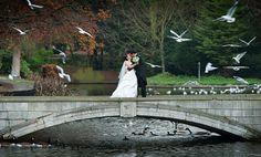 Wedding at Carshalton Ponds.jpg (670×405)