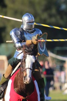 Swords, chain mail and jousting. Winterfest had it all. Riding Helmets, Medieval, Bring It On, Events, Horses, Hats, Animals, Winter Festival, Animales