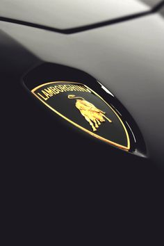 mistergoodlife:  Lamborghini