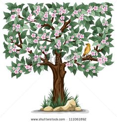 Spring flowering tree with bird isolated on white background - noted for bark detail