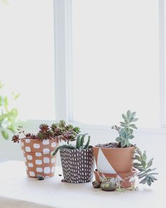 Craftykins // Painted Potted Plants