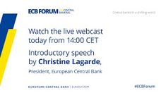 ECB Forum on Central Banking 2020 - Central banks in a shifting world - Online event, ECB Forum on Central Banking, 11 November 2020 at 14:00 CET Business Accounting, Accounting Services, Business Software, Conference Planning, Consulting Companies, Central Bank, Banks, November, How To Plan
