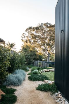 A simply beautiful contemporary Australian native Garden done so well. Garden design Plants supplied by A simply beautiful contemporary Australian native Garden done so well. Garden design Plants supplied by Australian Garden Design, Australian Native Garden, Landscape Plans, Landscape Architecture, Backyard Landscape Design, Modern Landscape Design, Architecture Student, Modern Design, Plant Projects