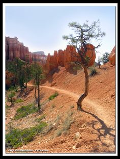 Bryce Canyon National Park is 72 miles east of Zion National Park. http://www.zionnational-park.com/bryce-canyon.htm