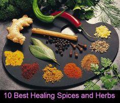 10 Best Healing Spices and Herbs  Turmeric, Cinnamon, Ginger, Basil, Garlic, Cumin, Mustard, Saffron, Cardamom, Mint...