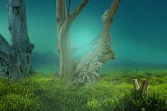 Photoshop color fantasy effects In Photoshop Photo Manipulation, Photoshop, Ps