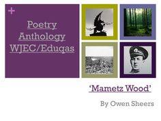 Mini Poetry Scheme: 'Mametz Wood' by Owen Sheers WJEC/Eduqas