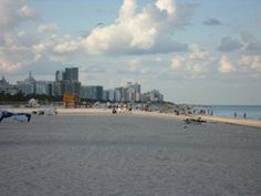 The One Day Miami Tour by Gray Line Orlando Tours takes you through the tropical oasis of Miami Beach for you to enjoy the clear blue ocean and soft sandy beaches Tour Tickets, Sandy Beaches, One Day, Miami Beach, San Francisco Skyline, Orlando, Tropical, Ocean, Tours