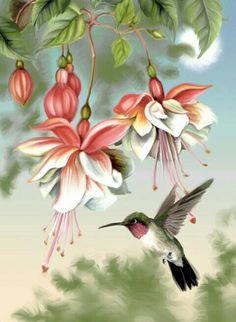 48 Ideas Humming Bird Art Watercolor Hummingbird Painting For 2020 Watercolor Hummingbird, Hummingbird Art, Watercolor Art, Colouring Pages, Coloring Books, Adult Coloring, Decoupage, Arte Floral, Beautiful Birds