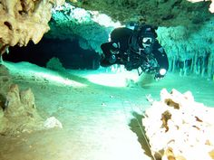 cave diving in cenote ox bel ha, mexico