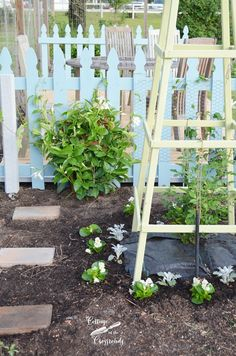 Changes in the Garden from Cottage at the Crossroads. This garden is amazing and there are so many great ideas. Tons of different sections and how they all flow together. They list plant suggestions too. Great info!