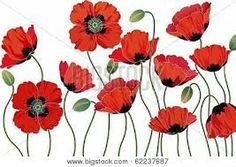 Image result for poppy blind