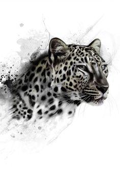 Framed Print - Black & White Snow Leopard (Picture Poster Animal Lion Tiger Art) Leopard Print Tattoos, Snow Leopard Tattoo, Big Cat Tattoo, Leopard Tattoos, Lion Tattoo, Cheetah Drawing, Head Tattoos, Snow Leopard Pictures, Jaguar Tattoo